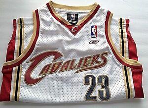 b65ff8230fe Reebok NBA Lebron James jersey Cavaliers  23 Boys Size M 10-12 Mesh ...