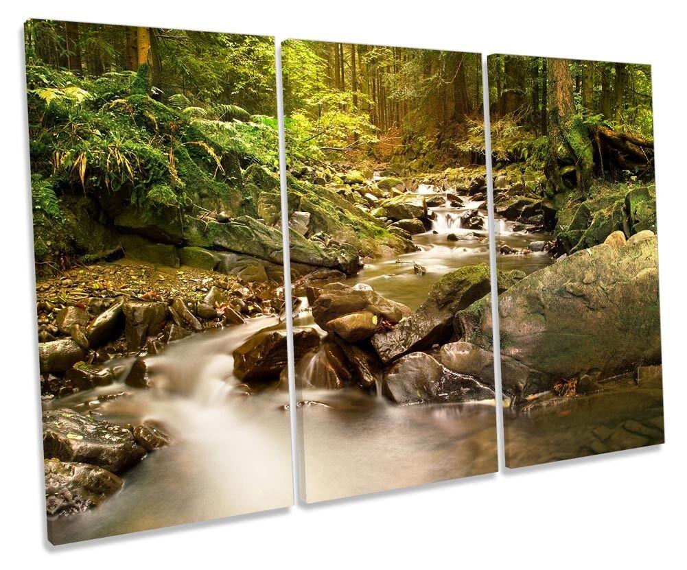 Rain Forest Grün Grün Grün River Picture TREBLE CANVAS WALL ART Print 0e071f