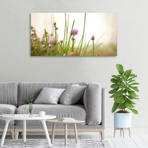 Glas-Bild Wandbilder Druck auf Glas 100x50 Deko Blumen /& Pflanzen Schnittlauch