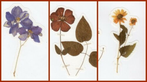 Lovely Leaves /& Flower Stickers