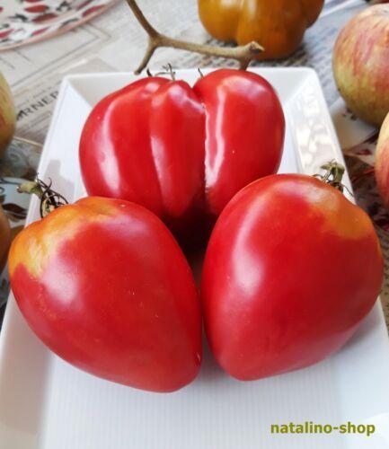 Tomate *Coracao de Boi* 10 Samen *Ochsenherztomate *Aromatisch *Tomato seeds