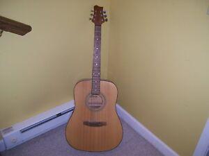 Telluride accoustic guitar TD-2 great look