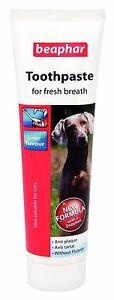 BEAPHAR-Dog-cat-toothpaste-for-fresh-breath-100g-liver-flavour