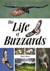 The Life of Buzzards by Peter Dare (Paperback, 2015)