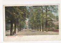 Southampton The Avenue c 1905 Postcard 167a