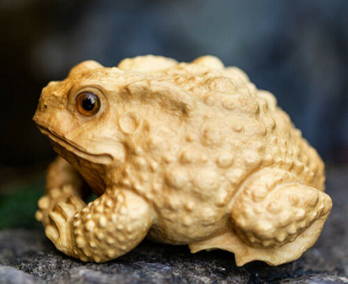 Toad Frog ? TL053ca 6x5.5x4.8 CM Hand Carved Boxwood Carving Figurine