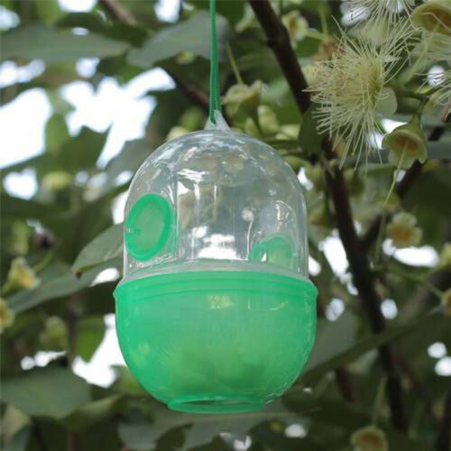 Outdoor Wasp Fly Trap Catcher Beekeeping Equipment/Tools for Wasps Bees Hornet