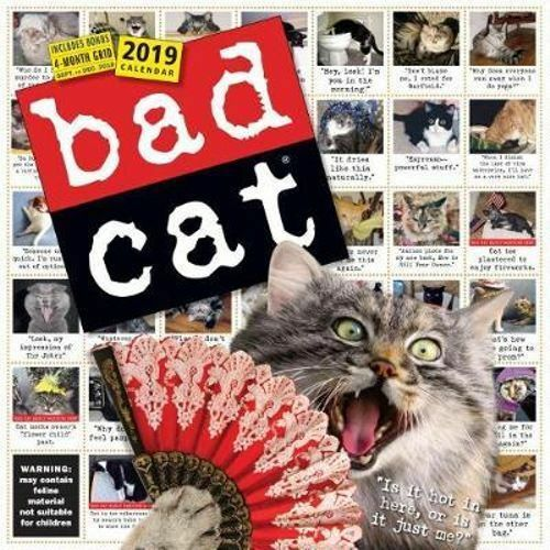 NEW Bad Cat Wall Calendar 2019 Wall Calendar Free Shipping