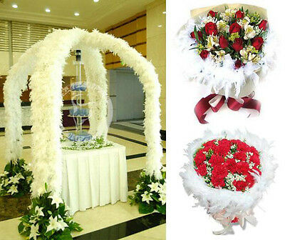 Hot Wedding Party Flower 2M Feather Boa Fluffy Craft Costume Dressup Home Decor