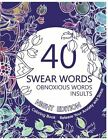 Swearing Word Colouring Book Night Edition 40 Obnoxious Words and Insults
