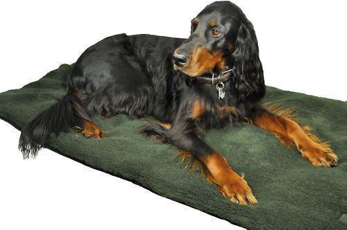 Nuevo  techo perros con webpelz lavables 95 x 140 cm  ventas en línea de venta