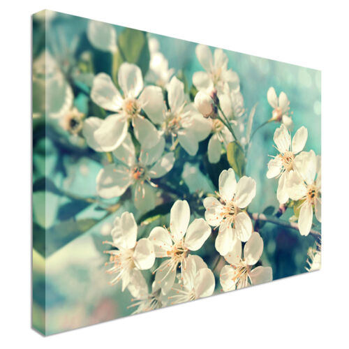 Cherry Blossoms Teal Canvas Wall Art Print Large Any Size