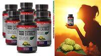 Cholesterol Pills - Morinda Citrifolia Tree Noni Extract 500mg 6 Bottles 360 Cap
