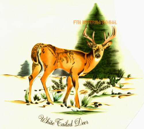 Buck 5 sizes to choose from, A04 ~ White Tailed Deer Ceramic Decals Antlers