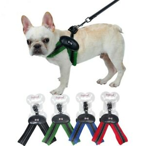 Flexy-Walk Dog Harness with Leash | eBay