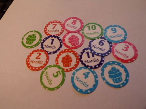 Pre Cut One Inch Bottle Cap 1 month through 11 months Free Shipping