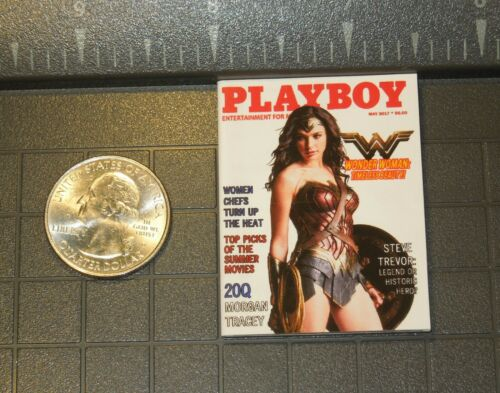1//6 Scale Custom Playboy-Wonder Woman-FULL INTERIOR