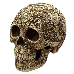 Resine-Humain-Crane-de-Tete-Replica-Modele-Squelette-Maison-Bureau-Decor-Cadeau
