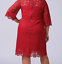 Lane-Bryant-Scallop-Edge-Lace-Fit-Flare-Dress-Plus-14-16-18-22-24-Red-1x-2x-3x thumbnail 3