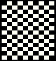 Checkers Area Rug 2'x 3'8 (60x110cm) Black Off-white