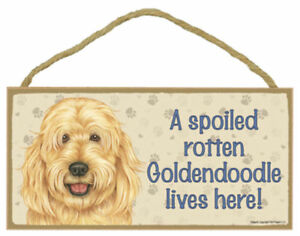 A-Spoiled-Rotten-Goldendoodle-lives-here-Dog-Sign-5-034-x10-034-USA-Wood-Plaque-131