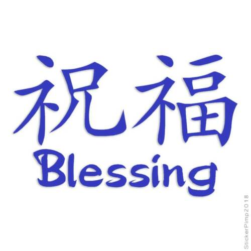 Blessing Chinese Symbols Decal Sticker Choose Color Size #2582