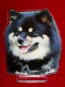 statuette-photosculptee-10x15-cm-chien-finnois-de-laponie-2-dog-hund-perro-cane