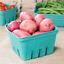 250 Berry Basket Pulp Fruit Vegetable Garden Farm Market Produce Container 1 Qt