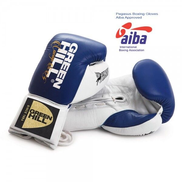 Grünhill Pro Fight Boxing Leder Gloves Pegasus Training Sparring Quality Leder Boxing bb6e5c