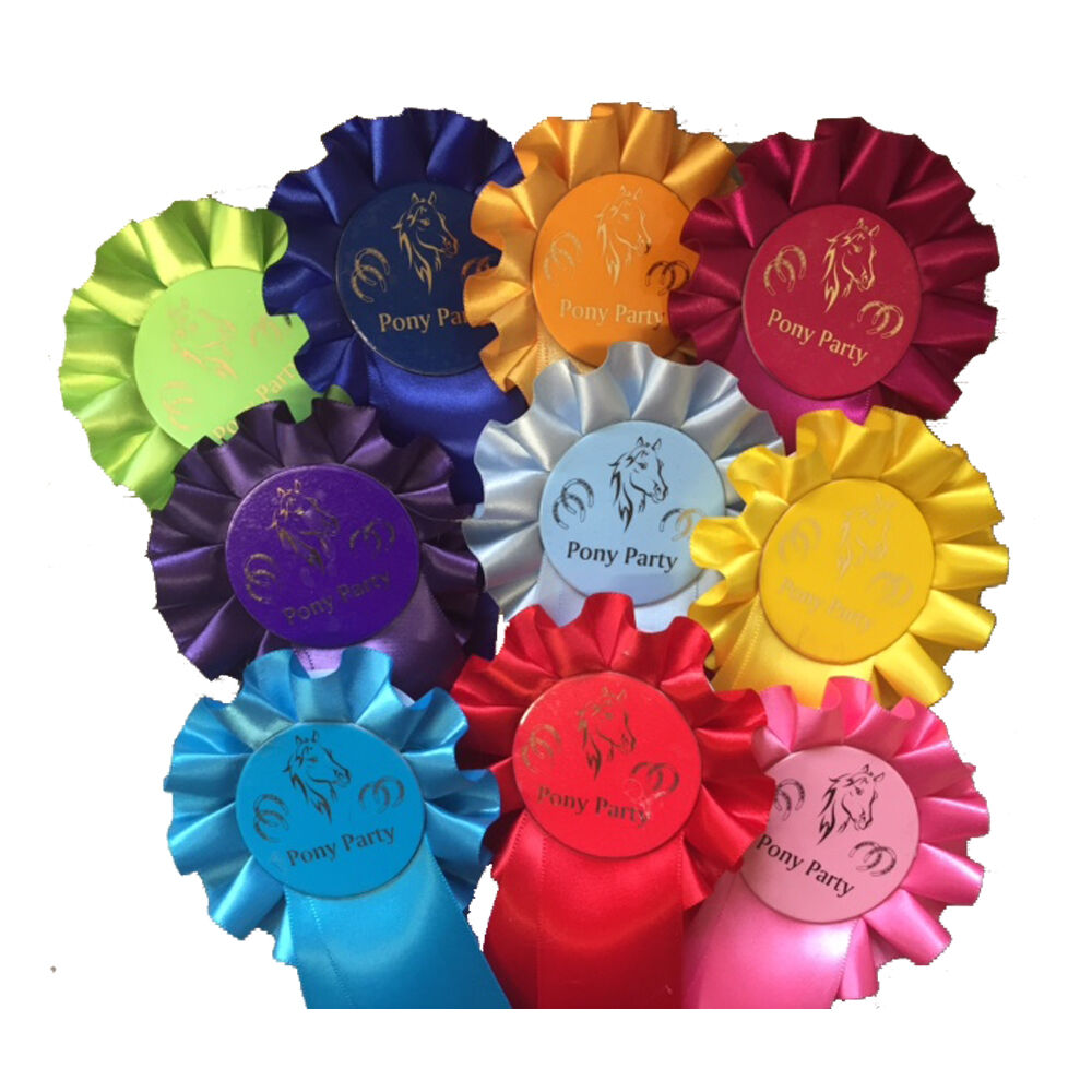 *Rosettes 1 x 100 **Pony Party**Clear Round**Well Done**Personalised**Special**