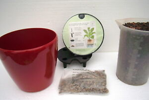 Semi-Hydrokultur-Lechuza-Classico-21-scarlet-set-Dan