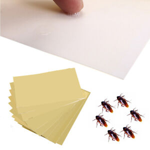 20x Cockroach Roach Glue Traps Disposable Insect Pest Control House Home Use