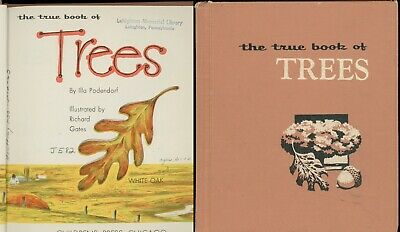 PA Indian Massacre Keller Farm Speer Book *HI RES CD 1926 * History of Delabole