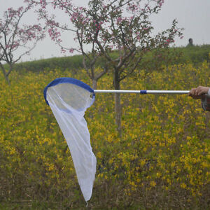 Butterfly-Bug-Insect-Catching-Net-Extendable-Aluminum-Handle-Children-Kids-Gift