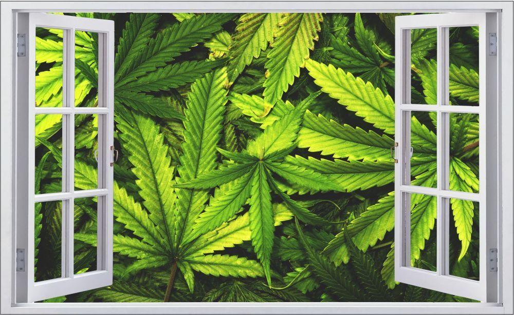 Cannabis droga marihuanna canapa Muro Tatuaggio Parete Adesivo Parete Adesivo f0679