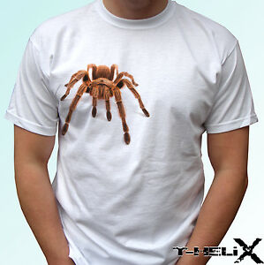 40f9b927 Image is loading Spider-Tarantula-white-t-shirt-Halloween-top-animal-