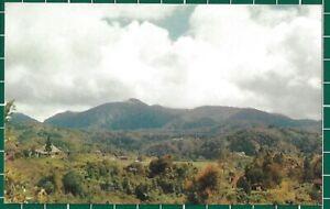 CWC-Malaya-1950s-1960s-Cameron-Highland-Pahang-Postcard-3302-Near-Mint