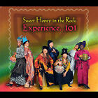 Experience...101 by Sweet Honey in the Rock (CD, Sep-2007, Appleseed Records)
