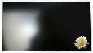 "lp173wd1 Glossy d3 17,3/"" display a LED SCREEN TL"
