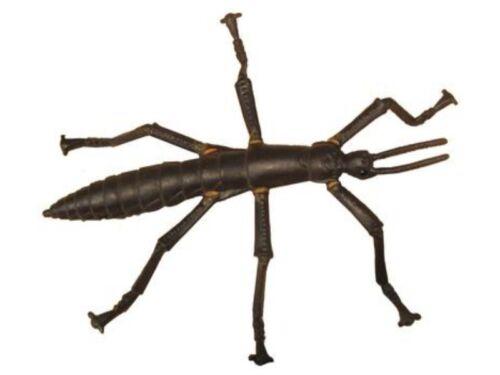 ALBERO aragosta Lord Howe Island 10 cm Animals of Australia Science and Nature 75348