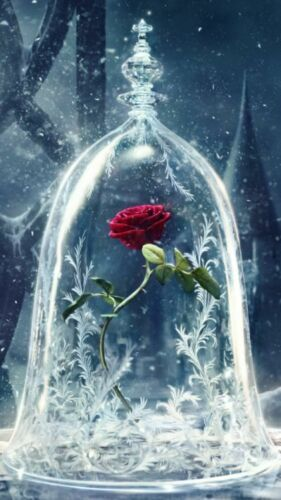 Disney beauty and the beast 5D Diamond Painting Full Drill DIY Embroidery