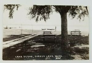 Postcard-Real-Photo-Lake-Scene-Forest-Lake-Minnesota-Boats