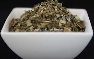 Dried-Herbs-WITCH-HAZEL-Hamamelis-virginiana-50g