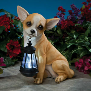 Realistic-Chihuahua-Dog-Garden-Sculpture-Holding-Solar-Lighted-Lantern