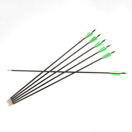 6PCS 30 In Fiberglass Arrow SP 400 w//2 Green 1 White Feather for Archery Hunting