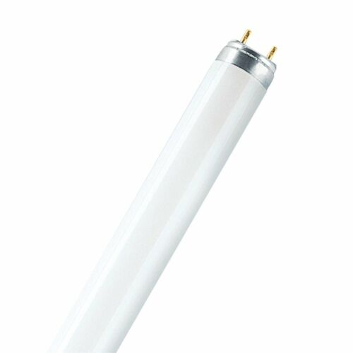 58w-Daylight luce 865 luce del giorno 25x tubo fluorescente OSRAM LUMILUX-t8