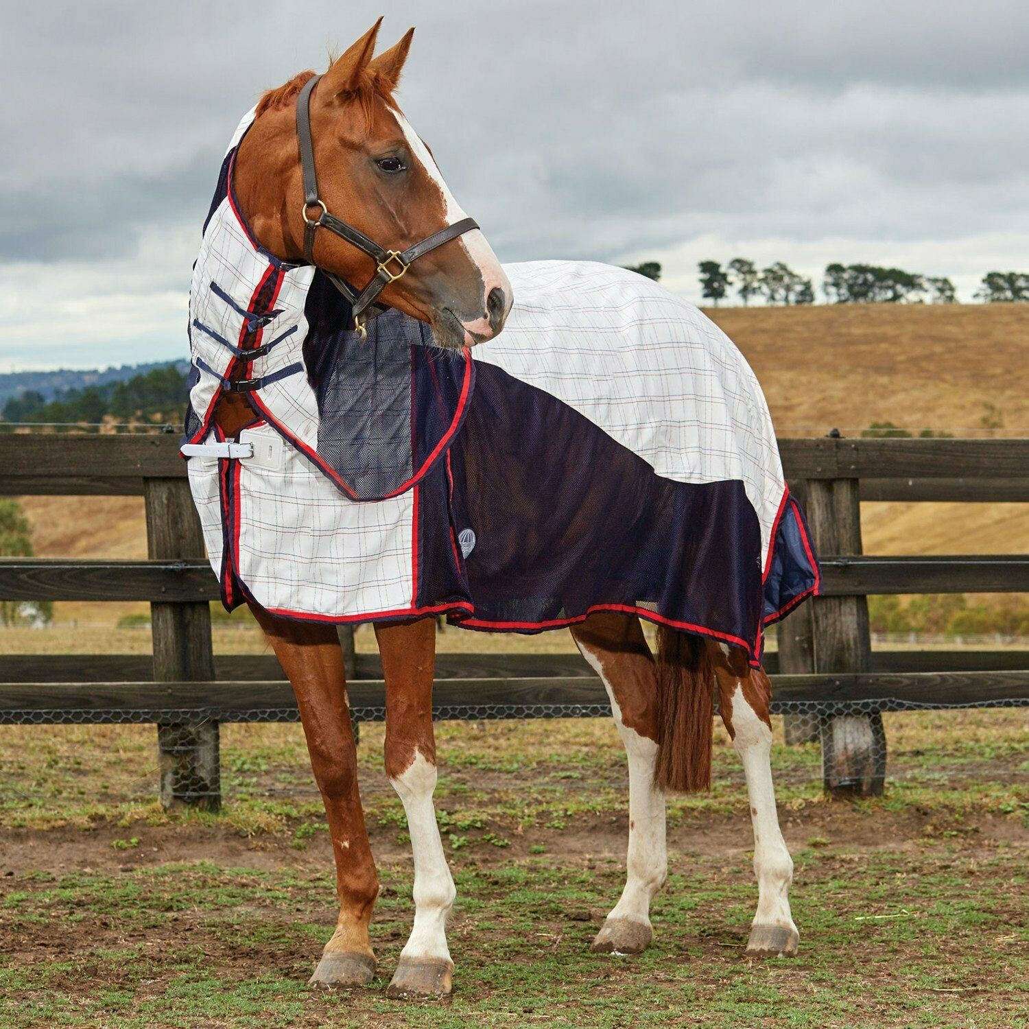 Weatherbeeta Breeze Ii Combo Horse Rug Sheet - White Navy Red All Sizes