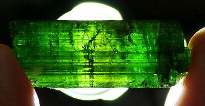 Vornehm >>>turmalin Kristall Sammlerstück/schleifstück