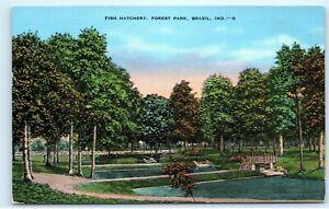 Details about Fish Hatchery Forest Park Brazil Indiana 1950s Vintage  Postcard D93