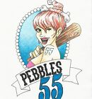 55pebbles